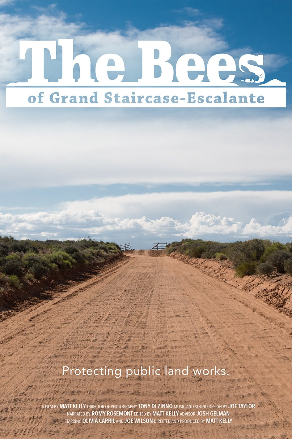 The Bees of Grand Staircase-Escalante poster of a road in the desert